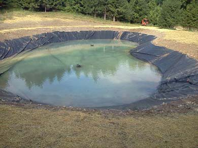Pond liners by clearly aquatics rochester ny for Small pond liner
