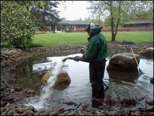 Pond maintenance by clearly aquatics rochester ny for Garden pond cleaning
