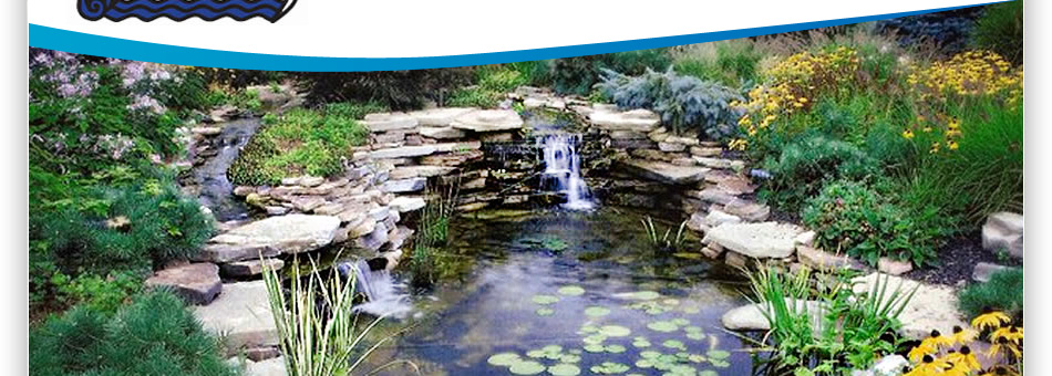 Clearly Aquatics Providing Water Gardens Pond Maintenance Waterless Features And